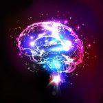 Российские ученые узнали, как защитить мозг при инсульте