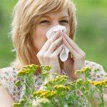 Испытана новейшая вакцина против аллергии на пыльцу растений