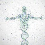 Ученые изучают генетические причины развития подагры